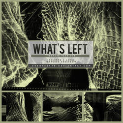 What's Left Texture Pack (#78) by ErenaeErae