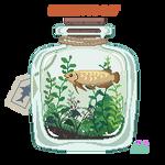 Arowana terrarium
