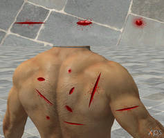 Wounds for XNALara/XPS by dasliebesverbot