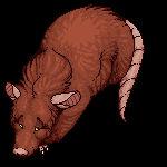 FREE Possum Base