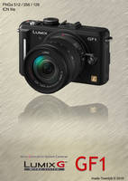 Lumix GF1 Icon by made-Twenty9