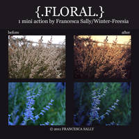 Floral Action Set by Winter-Freesia
