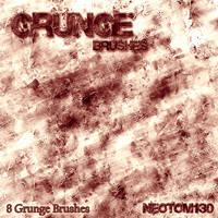 Grunge brushes 1st by neotom130