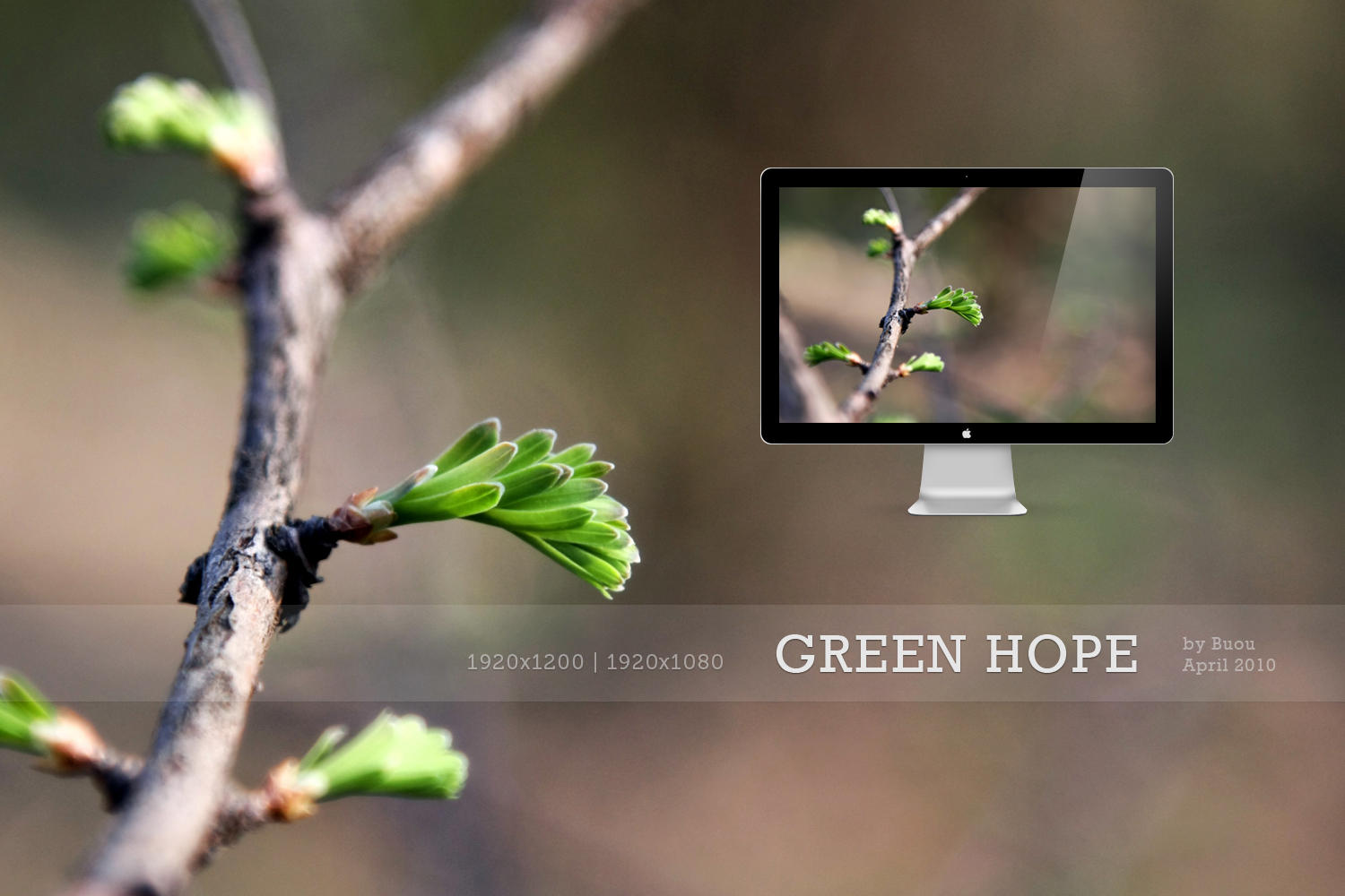 HD Wallpapers Green Hope by Buou