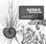 20 ocean textures