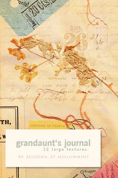 Grandaunt's journal