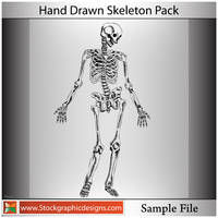 Hand Drawn Skeleton-Vector by Stockgraphicdesigns