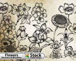 Hand Flowers Free Brushes Pack by Stockgraphicdesigns