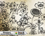 Hand Flowers Free Brushes Pack