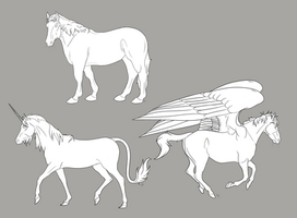Horse Species Colorable - Free