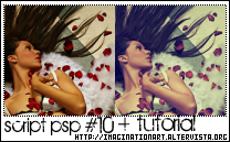 Colorization 10 - Script PSP9 by pinkshadoww