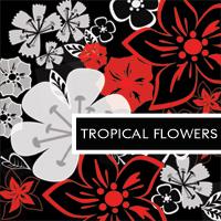 Tropical Flowers by Snjezana