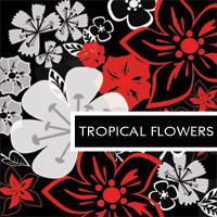 Tropical Flowers by Snjezana