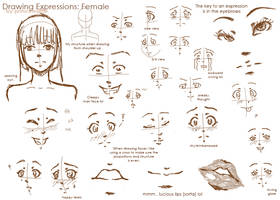 Expressions: Female by ChibiPandaMonster