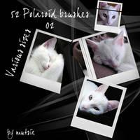 52 Polaroid_brushes No.02 by TaScha1969