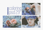 PSD COLORING 29