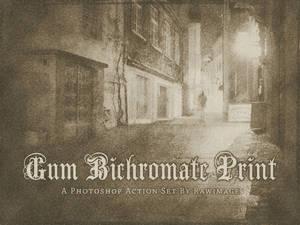 Gum Bichromate Print