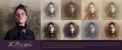 The Black Widow - Albumen Prints 1.0 by rawimage