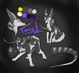 Tranzit Ref sheet by Ready-set-RUN