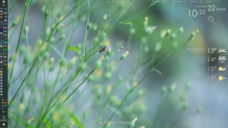 FlowerWorks 1.0 EN by JeremyG5