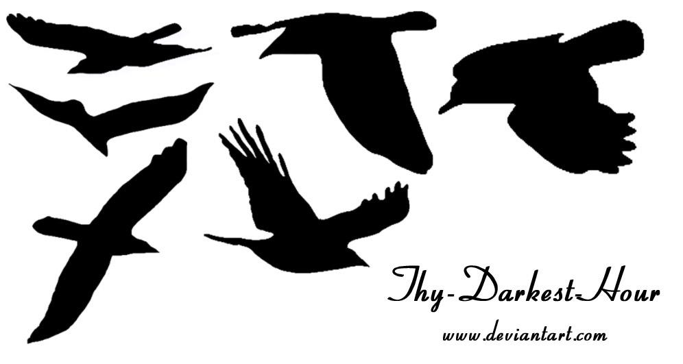 Bird Brushes by Thy-Darkest-Hour