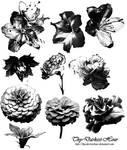 Flower Brush Set 01