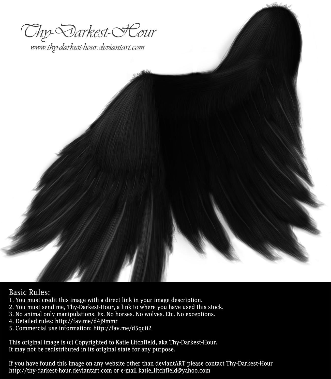 Soft Folded Angel Wing - Black PSD