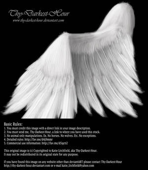 Soft Folded Angel Wing - White PSD