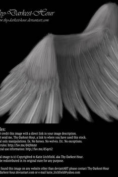 Soft Folded Angel Wing - Silver PSD