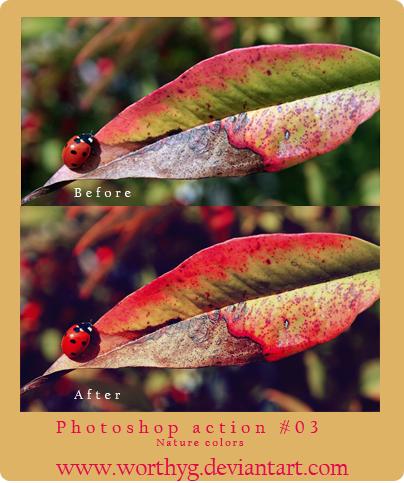 Photoshop Action-Nature Colors