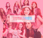 Rose png pack [Fansign event Yeouido] by Pink-Siren