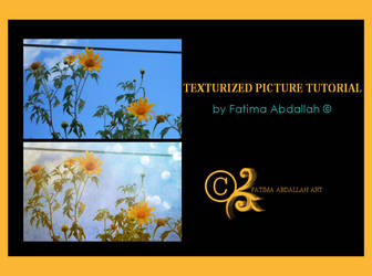 Texturized Picture Tutorial
