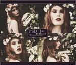 PSD 14.