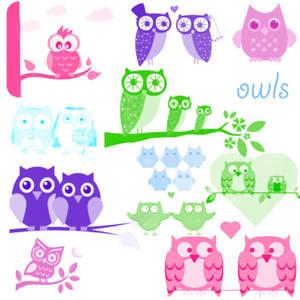owl brushes for photoshop