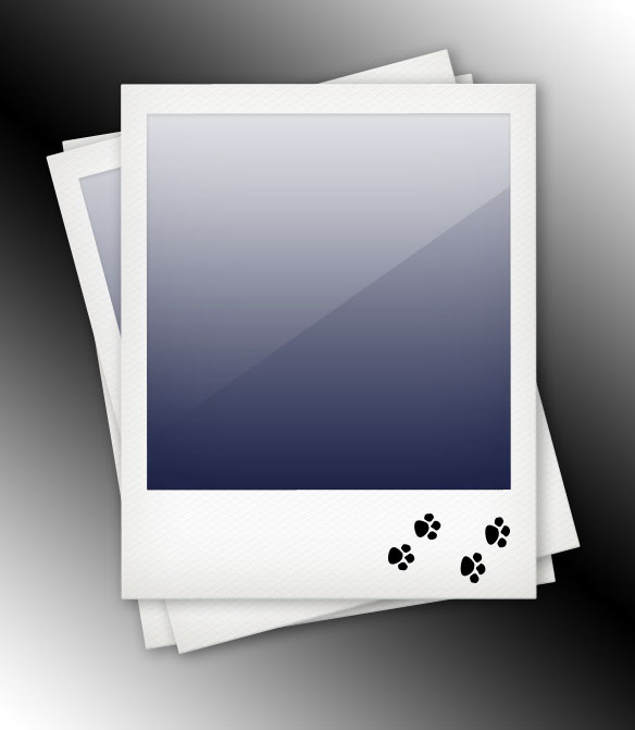 Polaroid Template by datamouse