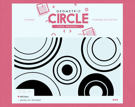 .geometric circle / brushes #4