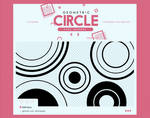 .geometric circle / brushes #4