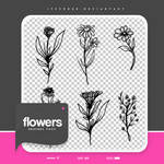 .flowers brushes #57