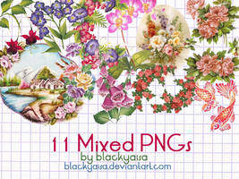 Mixed PNGs :4 by blackyaisa