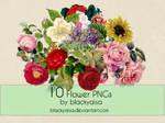 Flower PNGs: 11