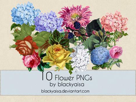 Flower PNGs: 10