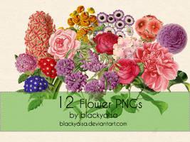 Flower PNGs: 12 by blackyaisa
