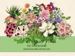 Flower PNGs: 13