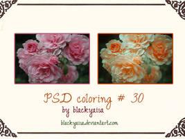 PSD Coloring: 30 by blackyaisa