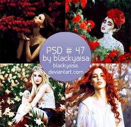 PSD Coloring: 47