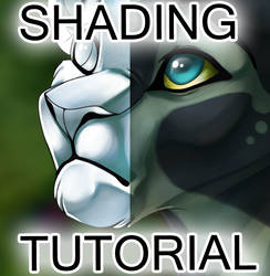 Shading Video Tutorial by Feyrah