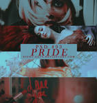 PSD #93   Pride by night-gate