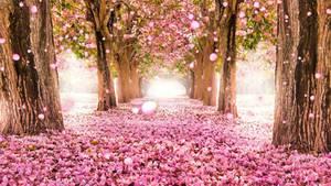Flowers HD Live Wallpaper