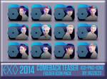 EXO 2014 Comeback Teaser Folder Icon Pack