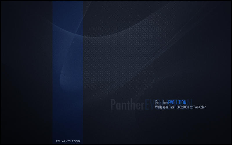 Panther EVOLUTION by neodesktop